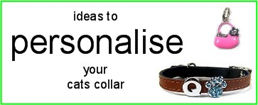 Personalised Cat Collars