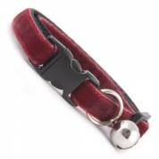 Claret Red Velvet Cool Cat Collar