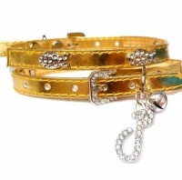 Gold Funky Fish Cat Collar