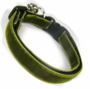 Olive Green Velvet Cool Cat Collar