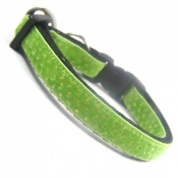 Pukka Velvet Collar for Cat | Green