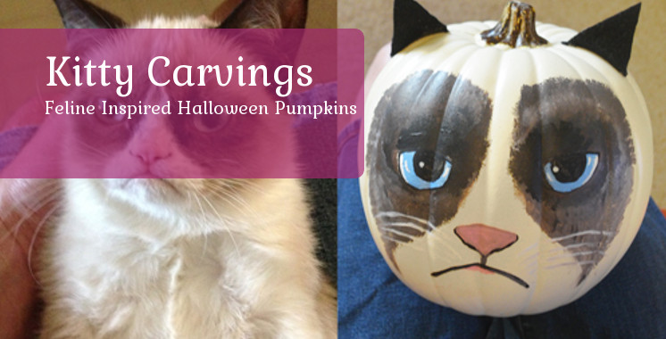 Kitty Carvings - Cat Pumpkin Designs