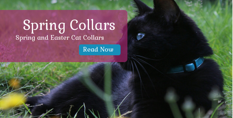 Easter & Spring Cat Collars