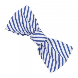 Blue Diagonal Stripe Bow Tie