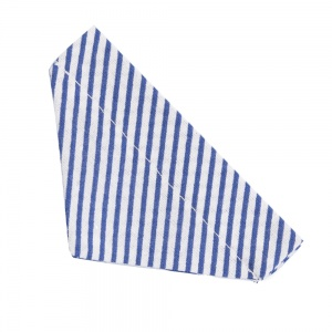 Blue Diagonal Stripe Bandana