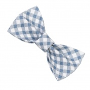 Blue Gingham Bow Tie