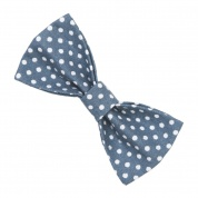 Blue Spotty Bow Tie