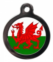 Welsh Dragon Cat ID Tag