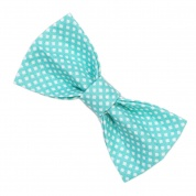 Teal Diamond spots Bow Tie