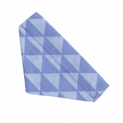 Blue Triangle Bandana