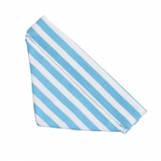 Light Blue Stripe Bandana
