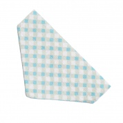 Light Blue Gingham Cat Banadana