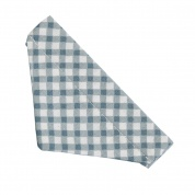 Blue Gingham Cat Bandana