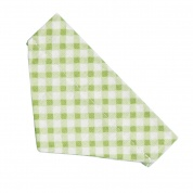 Green Gingham Bandana