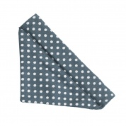 Blue Spotty Bandana